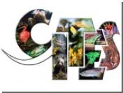 Снят запрет на экспорт каспийской черной икры