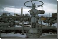 Сенатор назвал цены на поставляемый в Европу газ минимальными