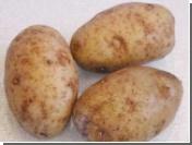 Испанские фанаты закидали вратаря крупной картошкой