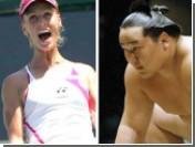 Теннисистки будут учиться у сумоистов