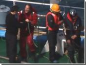 Японские китобои отпустили двоих защитников китов