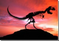 Причиной вымирания динозавров стали насекомые?