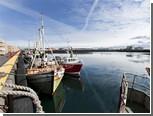 """ЕС отказался разгружать рыболовные шхуны Исландии из-за """"скумбриевой войны"""""""