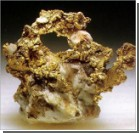 Австралиец нашел пятикилограммовый золотой самородок