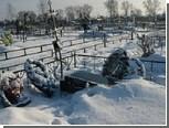 Инвалида заподозрили в разгроме кладбища в канун Нового года