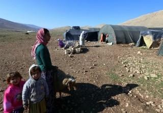 Жертвами боевиков ИГ в Ираке стали 15 тысяч человек