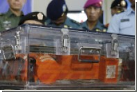 Перед падением на борту самолета AirAsia сработал сигнал тревоги