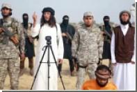 Египетских террористов сравнили с боевиками Басаева