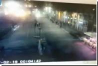 В Милане подожгли пальмы в знак протеста против африканизации