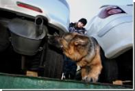 Таможня Владивостока предотвратила ввоз 1,5 тонны радиоактивных автозапчастей