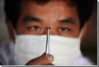 Китайские мухи оказались разносчиками супербактерий