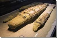 В Египте откопали мумию огромного крокодила