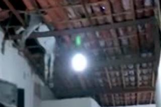 Заблудившийся осел упал на бразильцев с потолка