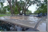 Трое датчан застряли на крыше машины в кишащей крокодилами реке