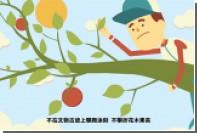 Опубликовано видео с правилами поведения для китайских туристов