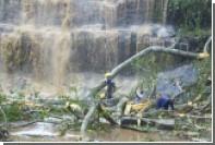 В Гане в результате падения дерева погибли 20 школьников