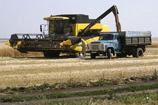 Турция отказалась подтвердить приостановку поставок российского зерна