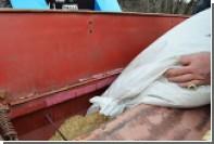 Минсельхоз занялся поиском новых рынков для российского зерна