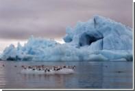 Оценена вероятность затопления Арктики