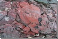 Найден древнейший организм на Земле