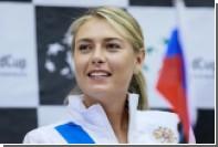 Шарапова рассказала о своем отношении к Серене Уильямс