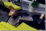 Агрессивный аллигатор пробрался в частный дом в Южной Каролине