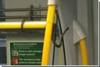В Австралии змея прокатилась на пассажирском поезде зайцем