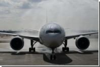 На борту самолета United Airlines умер гигантский кролик