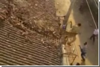 В Индии удирающий от леопарда полицейский спрыгнул с крыши