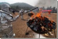 Китайские полицейские изъяли у наркоторговцев 20 килограммов героина