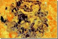 Обнаружен самый древний многоклеточный организм