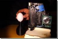 Покрашенные лазером яйца показали на видео