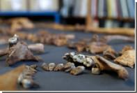 Археологи рассказали о борьбе средневековой Англии с зомби