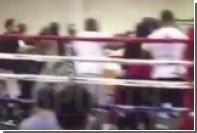 На юношеском турнире по боксу в США зрители устроили массовую драку