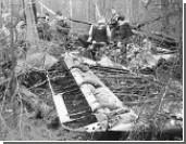 Названы три версии падения Ан-2 на Урале