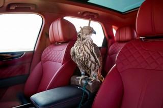 Bentley оборудовал внедорожник для любителей соколиной охоты