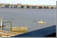 Крупный аллигатор погнался за байдаркой в Алабаме
