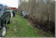 В США заползший в автомобиль паук вызвал аварию