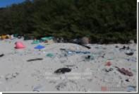 Ученые опубликовали видео с заваленного пластиковым мусором острова