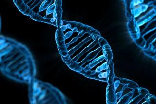 Разгадана главная тайна суперскрученной ДНК