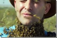 Пчелы искусали лицо исследователю дикой природы