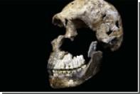 Раскрыт настоящий возраст пещерных людей из «Колыбели человечества»