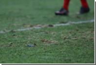 Матч «Зенита» с «Краснодаром» перенесли с «Крестовского» из-за плохого поля