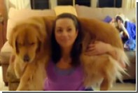 Приседания с собаками стали хитом среди любителей ЗОЖ