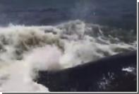 Выпрыгнувший рядом с лодкой горбатый кит шокировал рыбаков