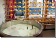 В Подмосковье возродят производство мещерского сыра