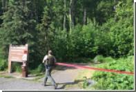 Участник забега на Аляске отправил смс и был загрызен медведем