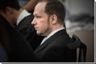 Брейвик решил пожаловаться в ЕСПЧ на страдания от одиночного заключения