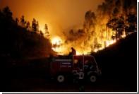 Число жертв лесных пожаров в Португалии выросло до 62