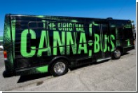 В Колорадо за счет продажи марихуаны профинансируют школы и больницы